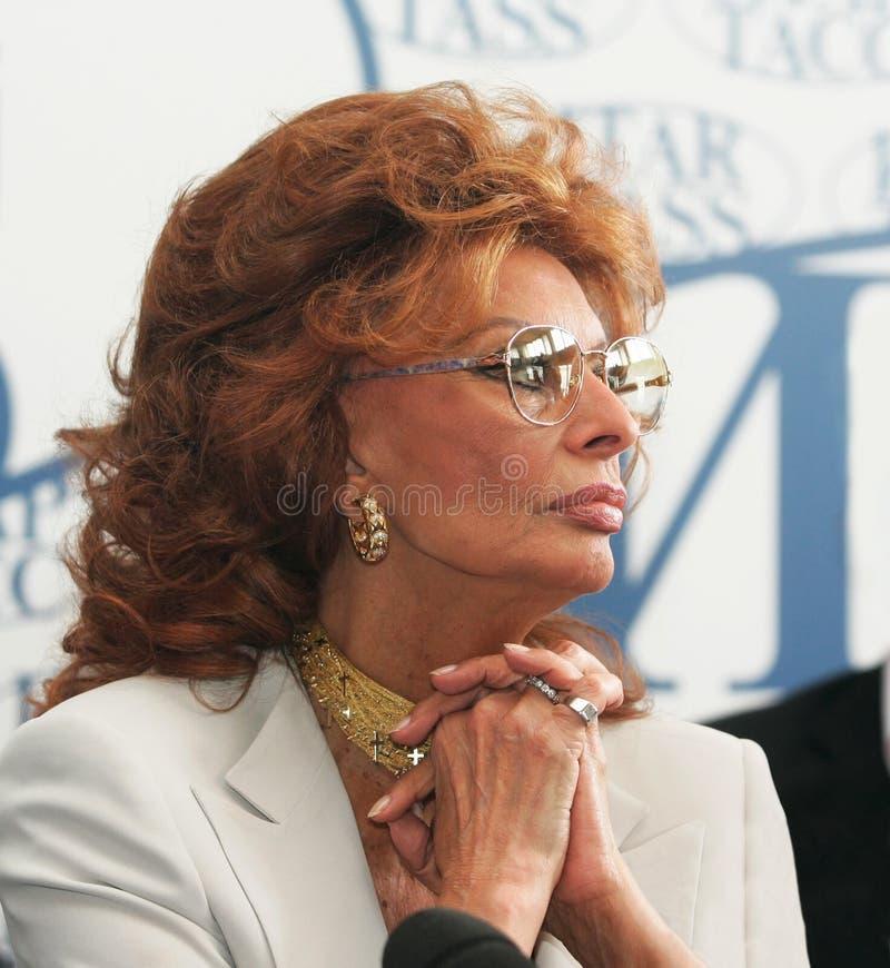 Sophia Loren lizenzfreie stockfotografie