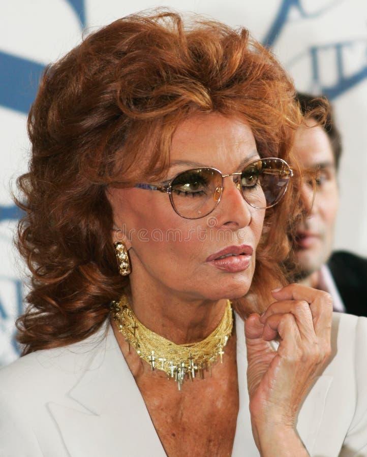 Sophia Loren stock images