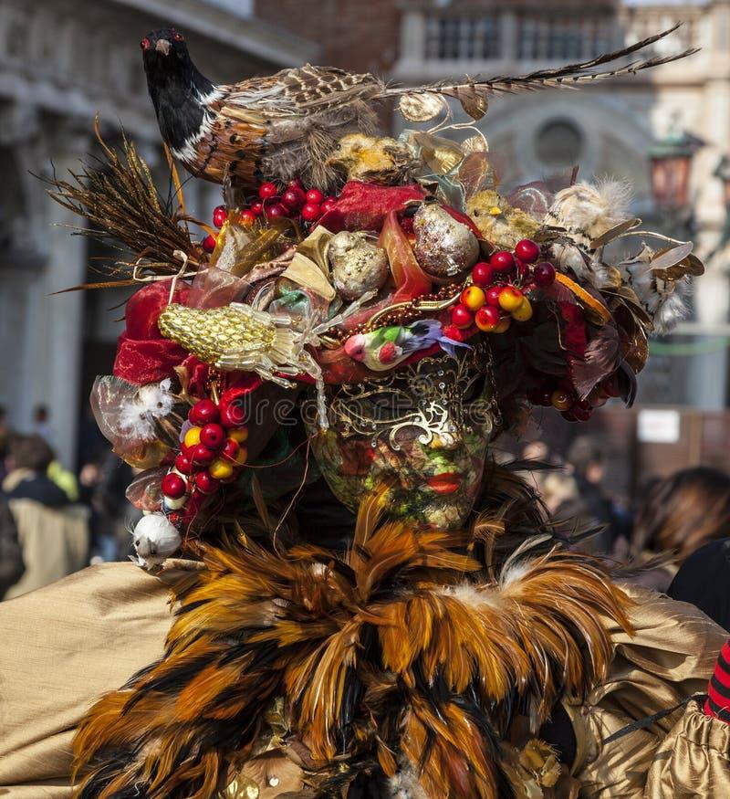 Sophisticate-venetianische Verkleidung stockfoto