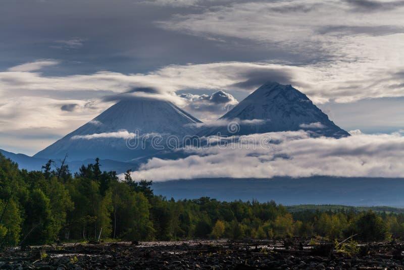Sopka de Kluchevskaya et vulcans de Kamen chez le Kamtchatka image libre de droits