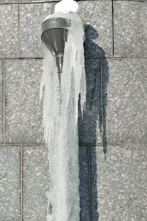 Sople śniegurek zimy odchodowy obrazy stock