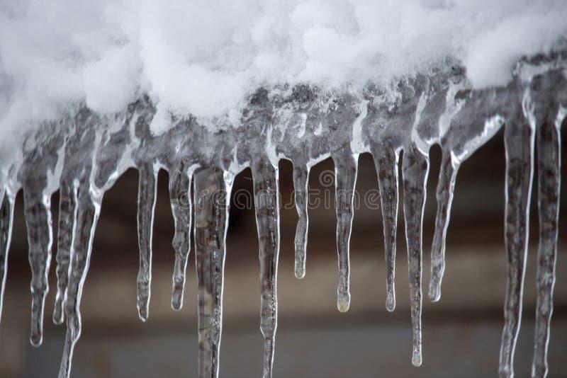 Sople i śnieg na dachowym zbliżeniu Zimy pogodowy pojęcie Marznął i lodu tło Śnieg i sopel zamrażający nad nadbrzeżnym zdjęcie stock