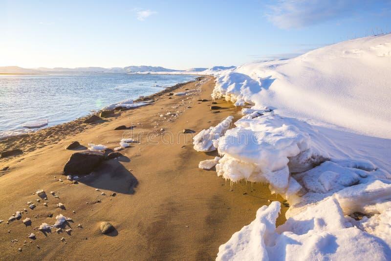 Sople na ?niegu Guba Voronya, Barents morza zatoka Kola p??wysepu krajobraz zdjęcie royalty free