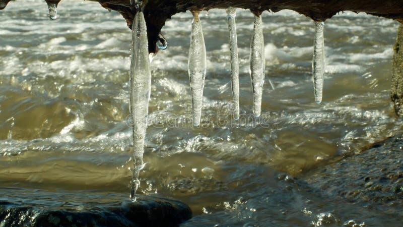 Sople nawadniają rzecznego Morava w zima marznącym magicznym i magicznym bielu, wieszający od nadwieszenia, płynie w dół z lodowy obraz royalty free