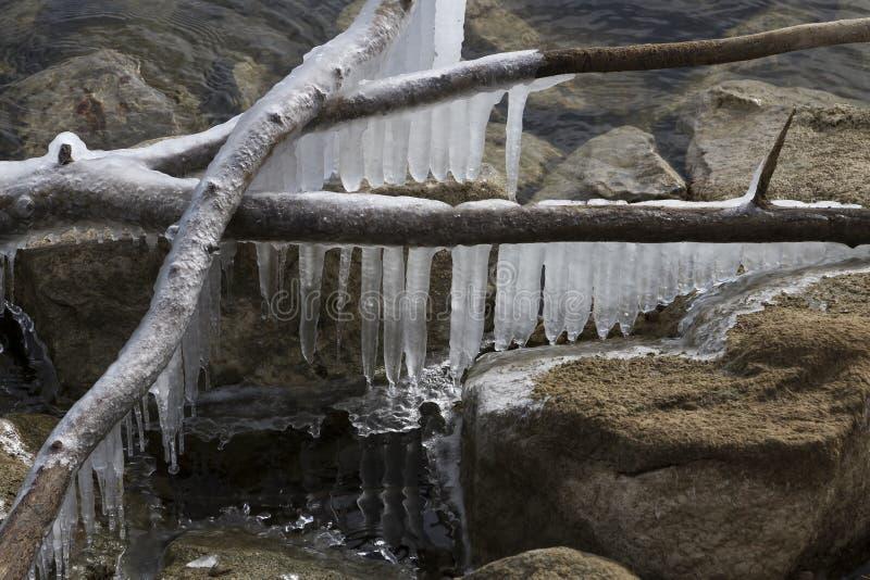 Sople Wiesza Nad jeziorem zdjęcia stock