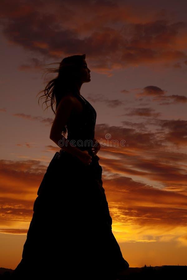 Soplo del pelo del vestido formal de la silueta de la mujer fotos de archivo libres de regalías