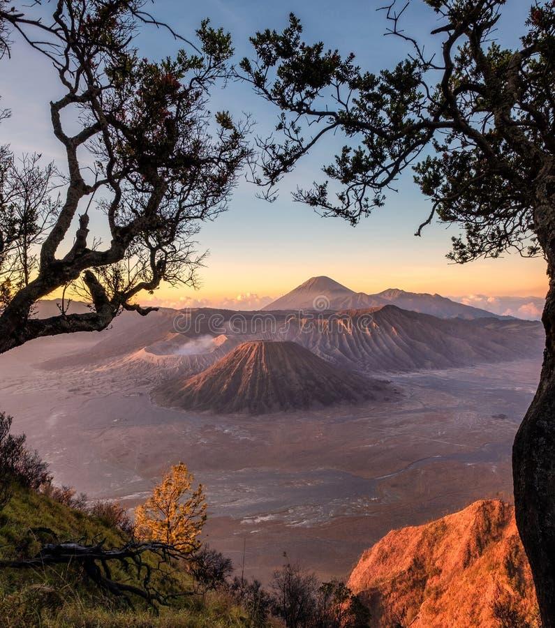 Soporte del volcán un activo con el marco del árbol en la salida del sol imagen de archivo