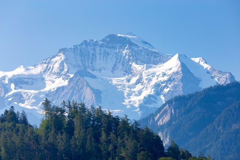Soporte Jungfrau en las montañas suizas en un día soleado imágenes de archivo libres de regalías