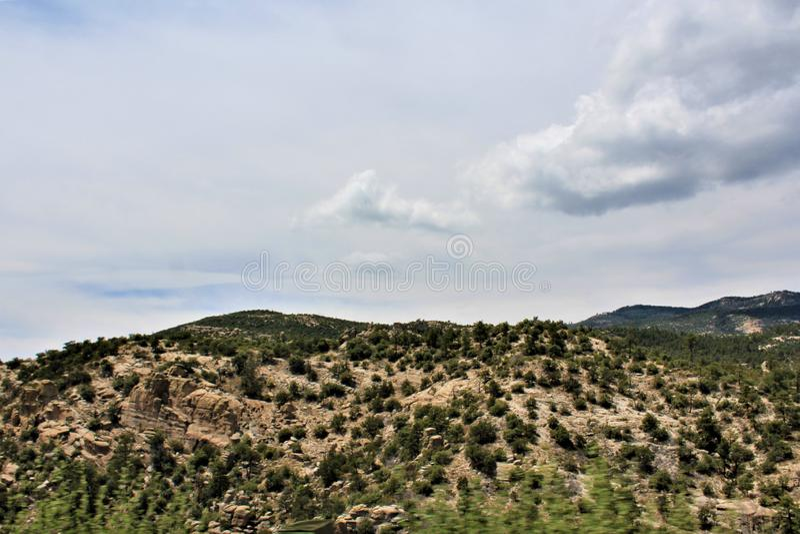 Soporte Lemmon, Santa Catalina Mountains, bosque del Estado de Coronado, Tucson, Arizona, Estados Unidos foto de archivo libre de regalías