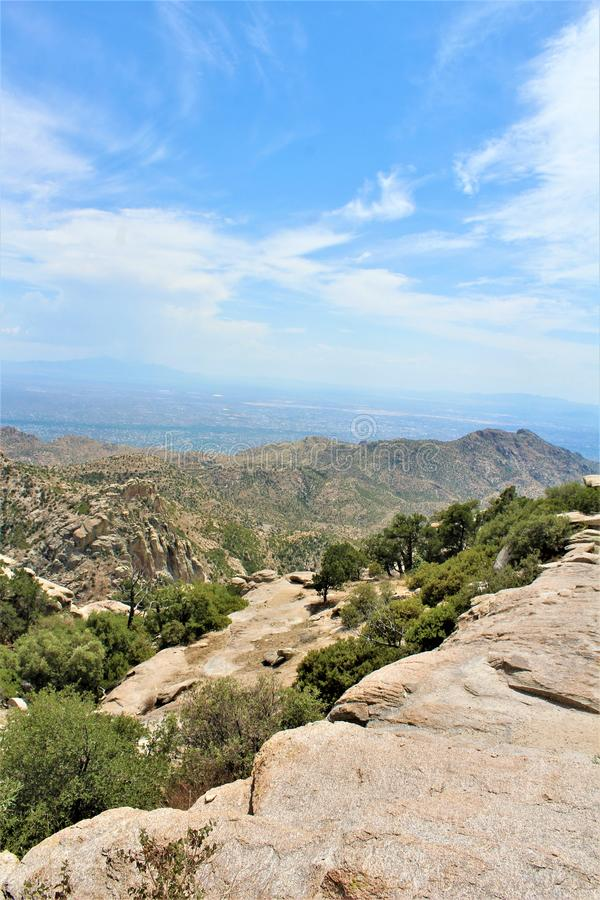 Soporte Lemmon, Santa Catalina Mountains, bosque del Estado de Coronado, Tucson, Arizona, Estados Unidos fotos de archivo libres de regalías