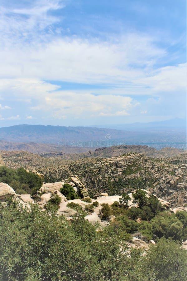 Soporte Lemmon, Santa Catalina Mountains, bosque del Estado de Coronado, Tucson, Arizona, Estados Unidos imágenes de archivo libres de regalías
