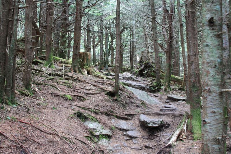Soporte Mitchell State Park Trail imagenes de archivo