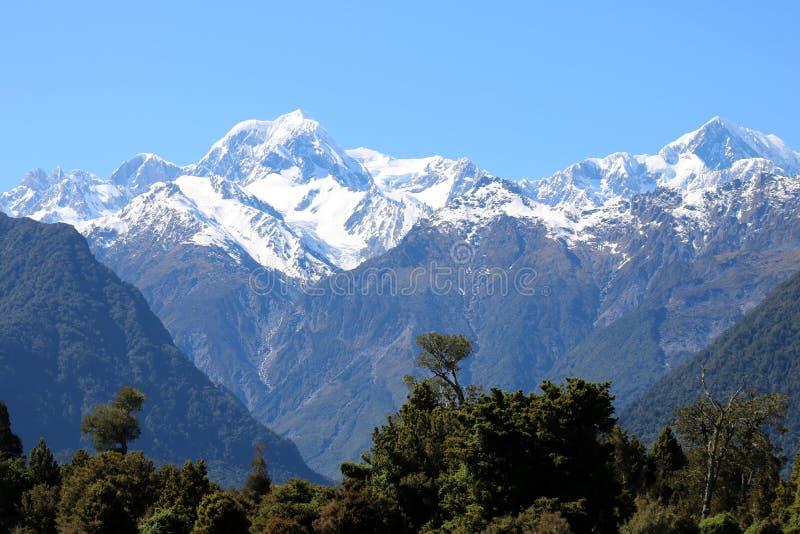 Soporte Tasman y cocinero del soporte, montañas meridionales, NZ imágenes de archivo libres de regalías