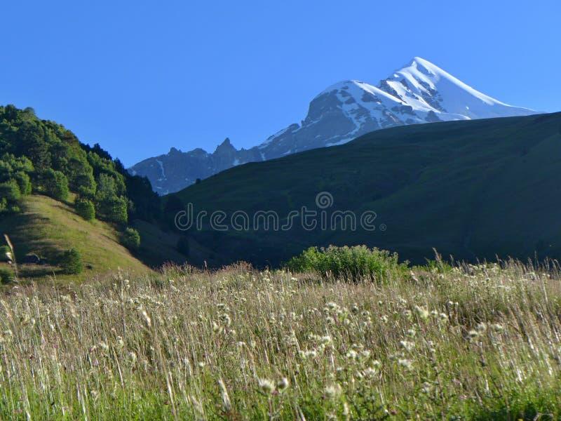 Soporte Tetnuldi, el Cáucaso georgiano imágenes de archivo libres de regalías