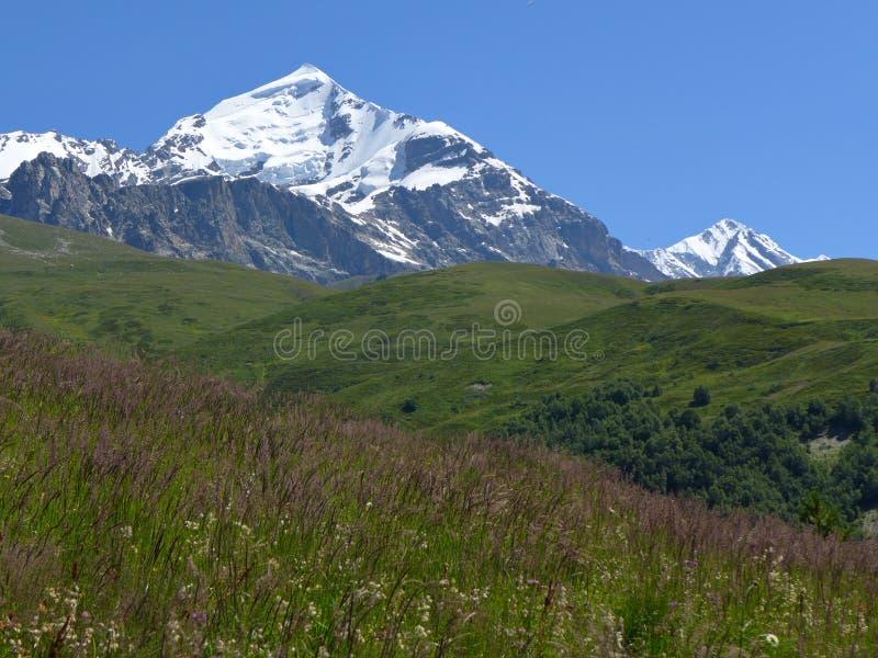 Soporte Tetnuldi, el Cáucaso georgiano fotos de archivo libres de regalías