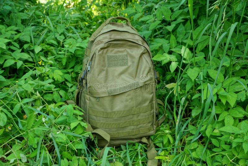 Soportes grandes de una mochila en la hierba verde con las hojas y la vegetación imagen de archivo libre de regalías