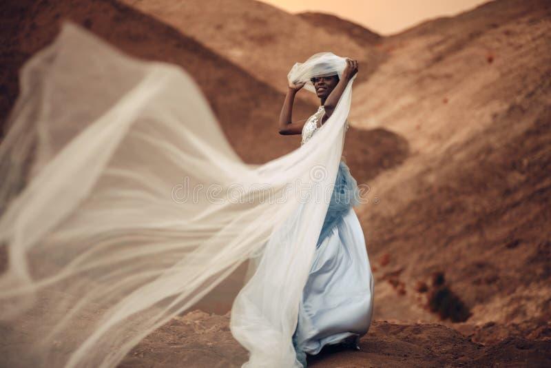 Soportes negros y controles de la novia que agitan velo nupcial en sus manos del fondo del paisaje hermoso imagen de archivo