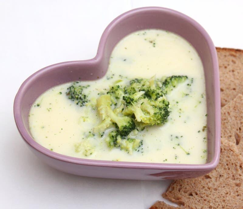 Soppa av broccoli arkivbilder