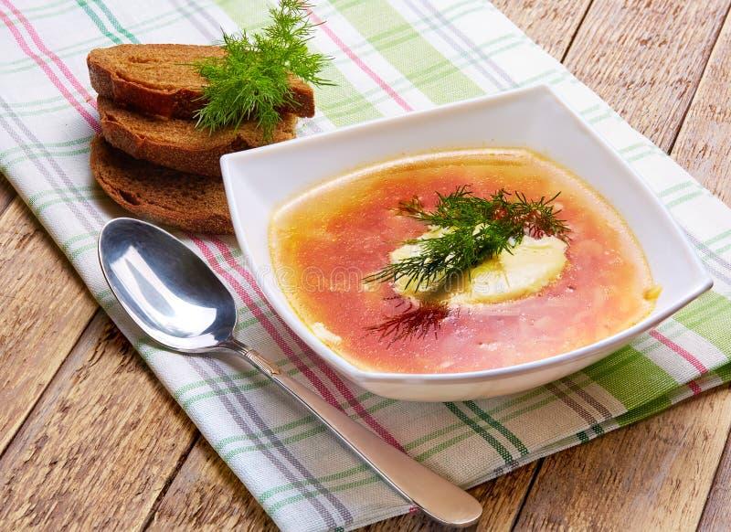 Soppa av kål med kött, gräddfil och fänkål arkivbild