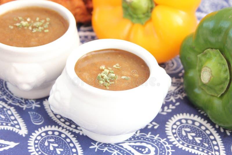 Soppa av lökar fotografering för bildbyråer