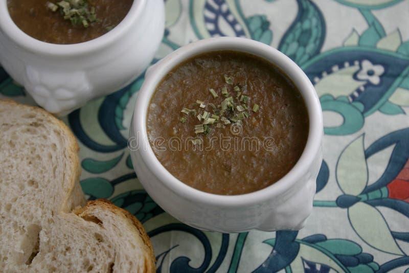 Soppa av lökar arkivfoto