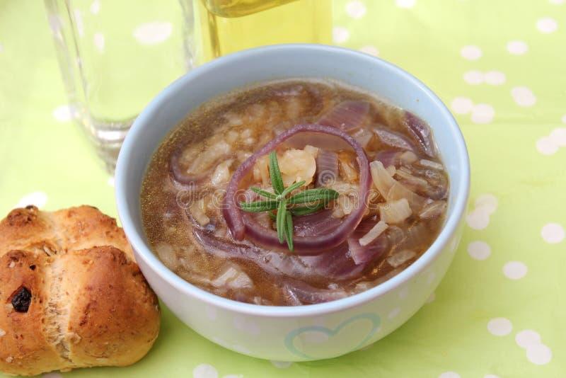 Soppa av lökar royaltyfria foton