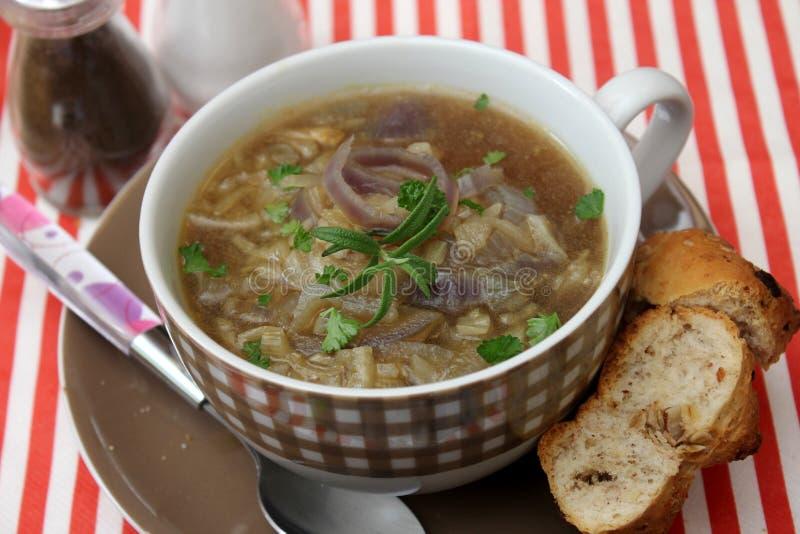 Soppa av lökar royaltyfria bilder