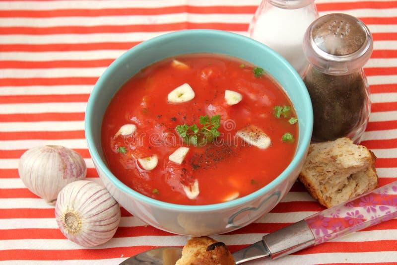 Soppa av tomater arkivfoton