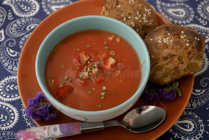 Soppa av tomater och grisköttkött royaltyfri fotografi