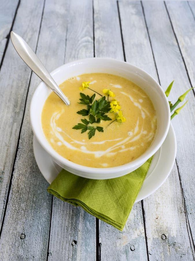 Soppa för Butternutsquash royaltyfria bilder