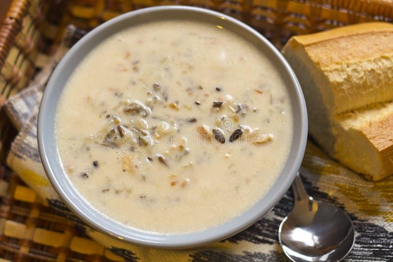 Soppa för fega och lösa ris royaltyfria foton
