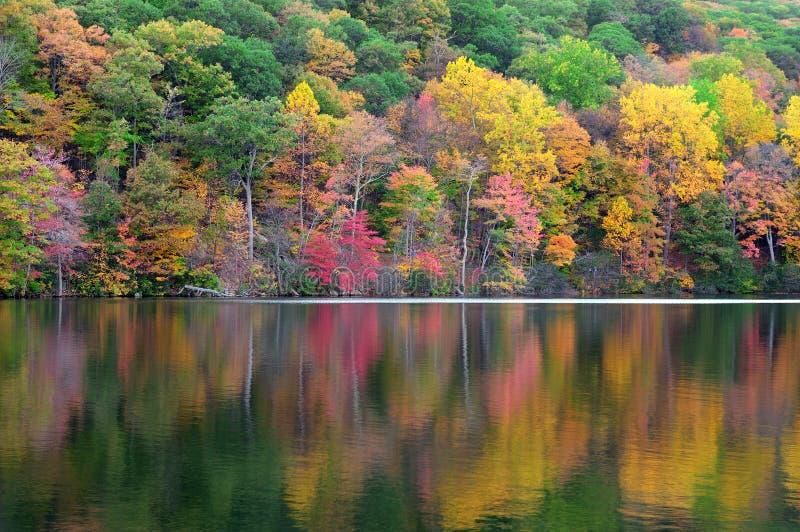 Sopporti il lago mountain fotografie stock libere da diritti