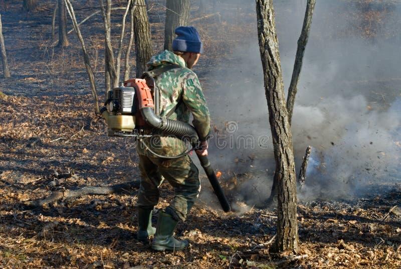 Soppressione di incendio forestale 29 fotografia stock libera da diritti