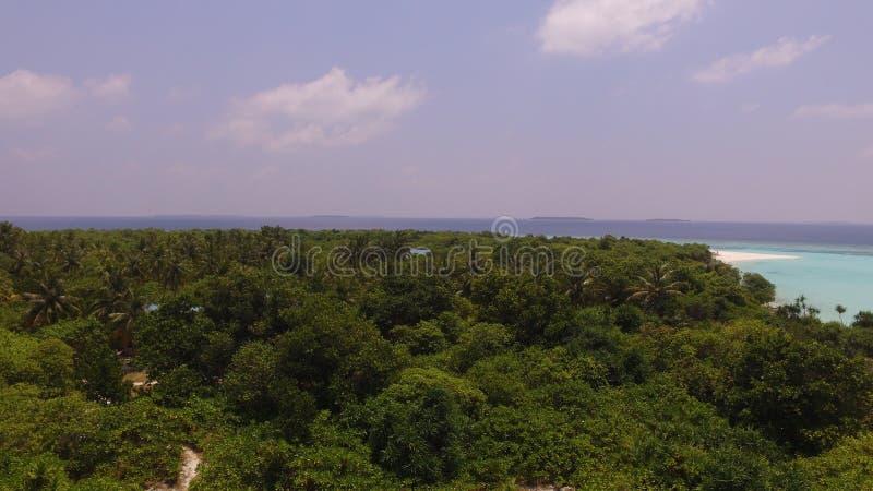 Sopra l'isola delle palme fotografia stock libera da diritti