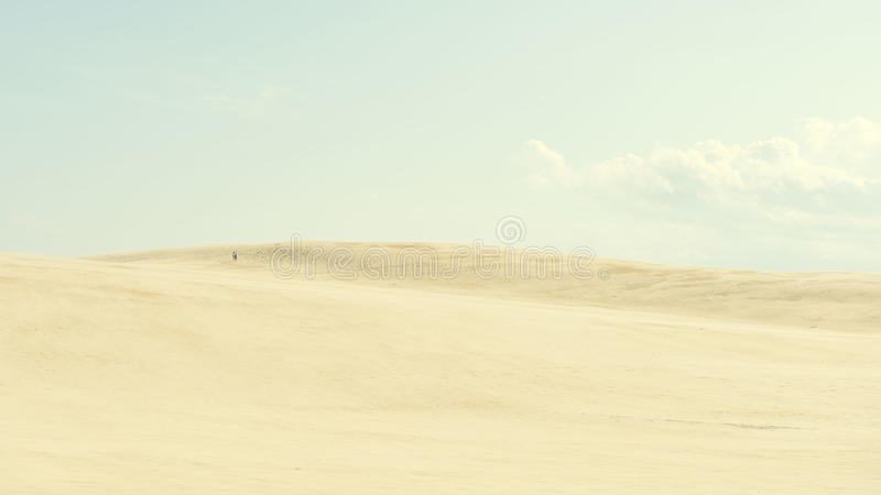 Sopra le dune immagine stock