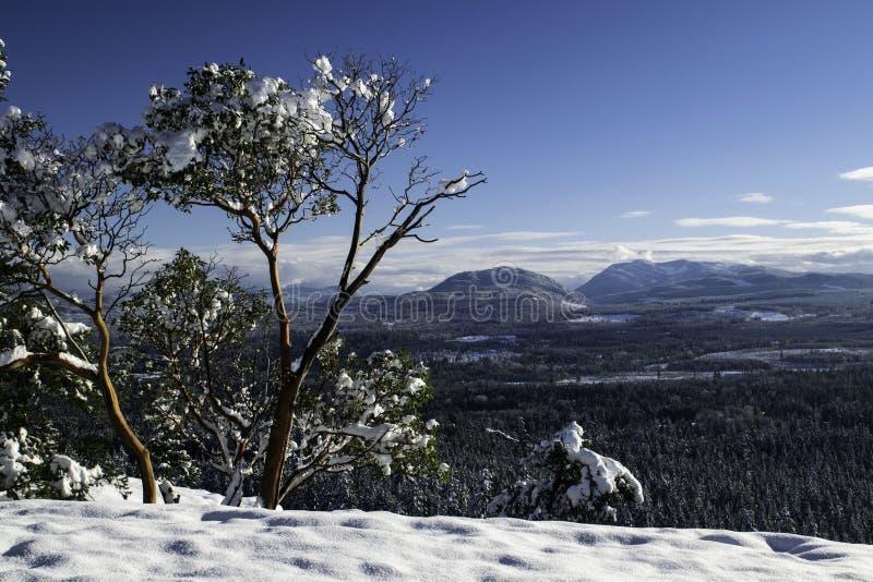 Sopra lo sguardo della valle di Snowy fotografie stock