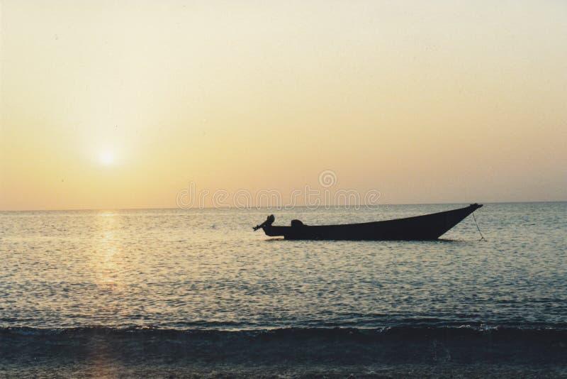 Soqotra wyspa obraz royalty free