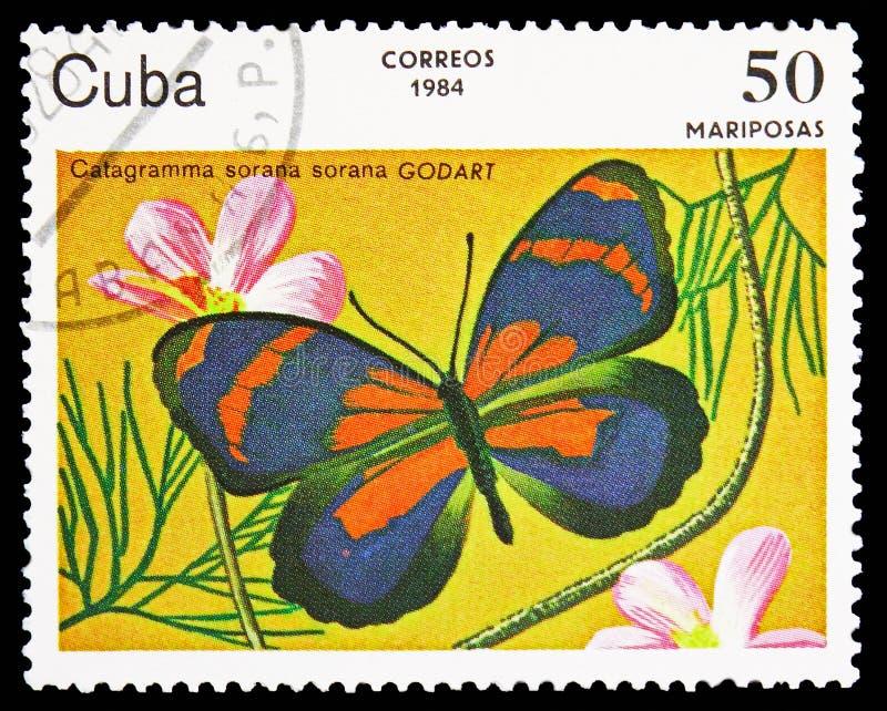 Sorana Osiemdziesiąt osiem, motyla seria około 1984, (Catagramma sorana) royalty ilustracja
