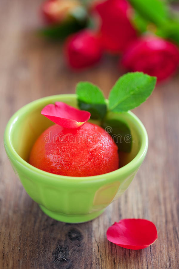 Sorbet stock images