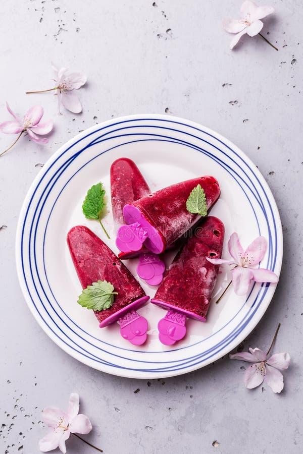 Sorbetto del lampone - freddo di estate, dessert fruttato di rinfresco immagini stock