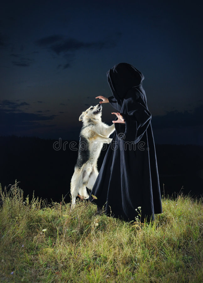 The sorcerer royalty free stock photo