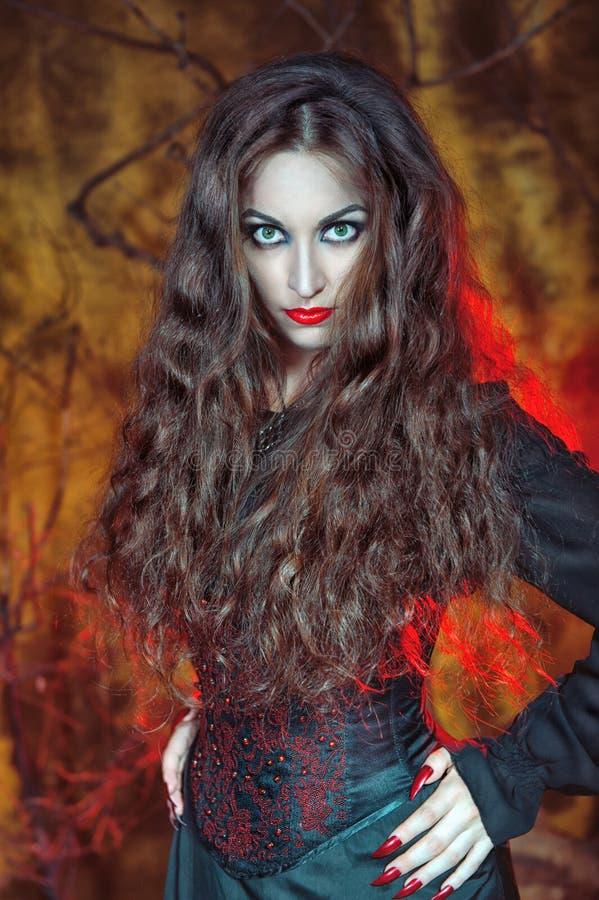 Sorcière de Halloween photo stock