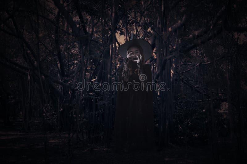 Sorcière effrayante au-dessus de forêt foncée fantasmagorique avec l'arbre, les feuilles et la vigne, photos stock