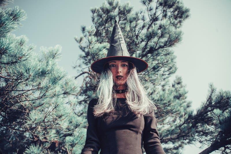 Download Sorcière Foncée Dans La Forêt Photo stock - Image du fille, magie: 76075876