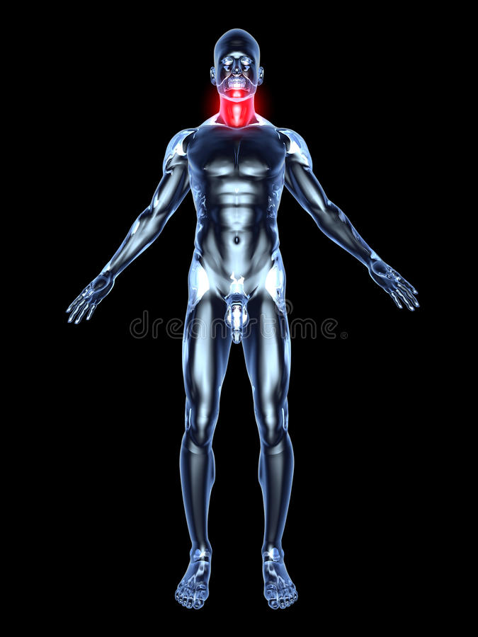 Sore Throat - Anatomy. Medical Illustration. 3D rendered Illustration. Isolated on black stock illustration