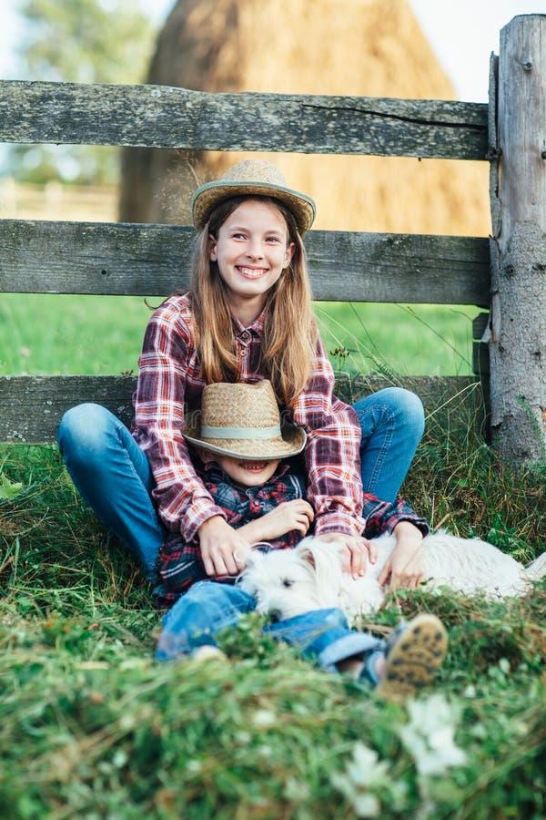 Sorella che abbraccia con il fratello che si siede vicino al recinto di legno fotografia stock