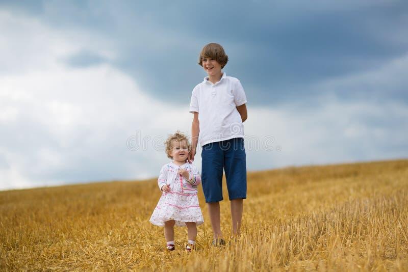 Sorella del bambino e del fratello che cammina in un giacimento di grano dorato immagine stock libera da diritti