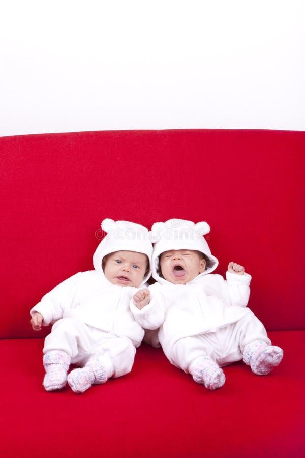 Sorelle del gemello identico fotografia stock libera da diritti