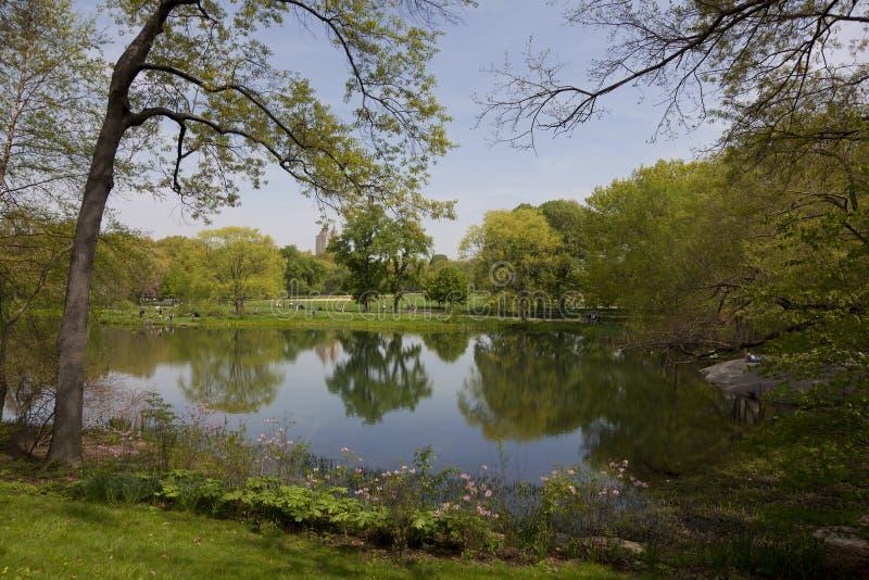 Sorgente in Central Park, New York fotografia stock libera da diritti