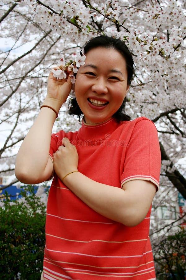 Sorgente in Corea fotografia stock